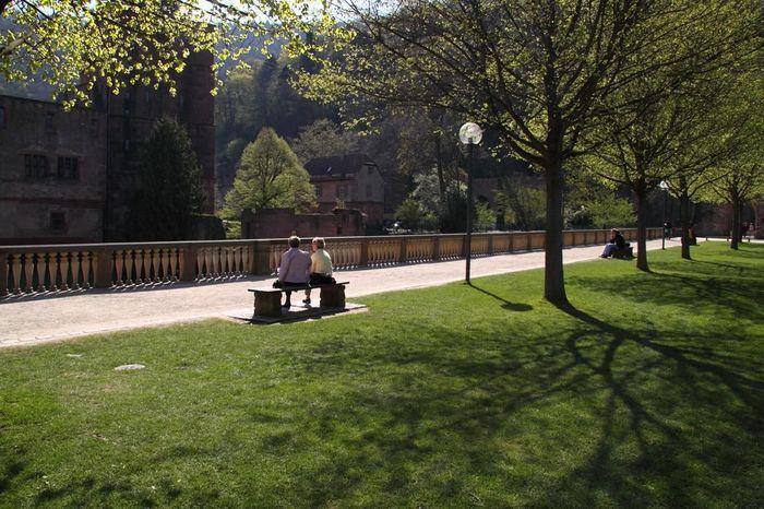 Jardin d'Artillerie du château de Heidelberg