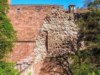 Schloss Heidelberg, Schildmauer