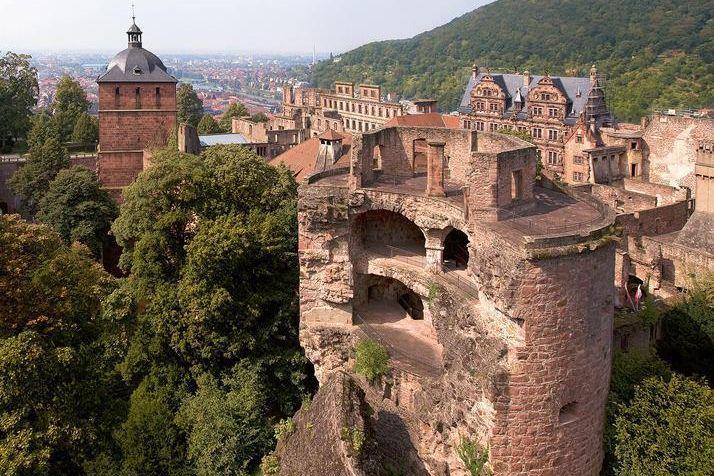 Heidelberg Palace is the largest winter habitat for bats in northern Baden. Image: Staatliche Schlösser und Gärten Baden-Württemberg, Achim Mende