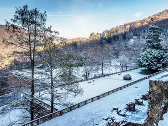 Schloss Heidelberg, Terrassenanlagen des Hortus Palatinus