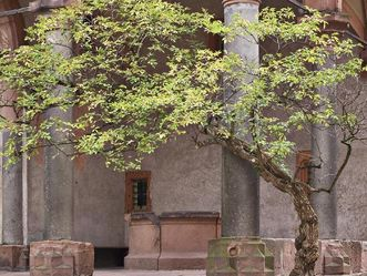 Schloss Heidelberg. Brunnenhalle